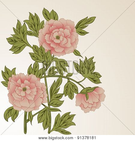 Floral Background With Peonies