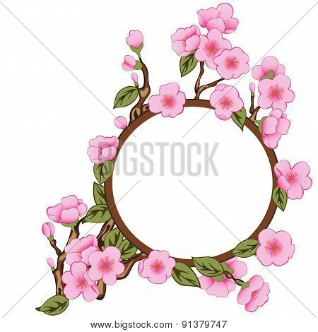 Floral Frame With Sakura