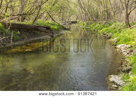 Canfield Creek In Spring