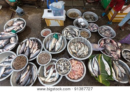 Fresh fishes in an Asian market in Mandalay, Myanmar