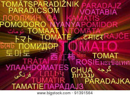 Background concept wordcloud multilanguage international many language illustration of tomato glowing light