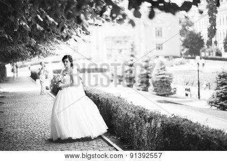 Brunette Bride