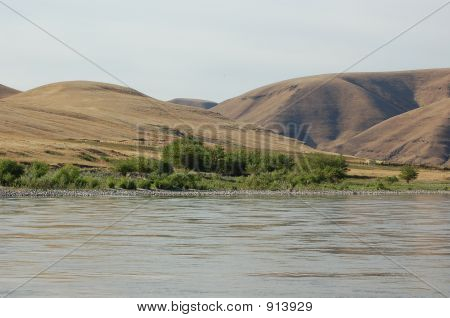 Desert Along The River