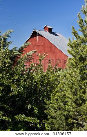 Part Of Red Barn And Trees.