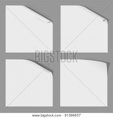 Curl Corner of Paper Sheets. Stock Vector Illustration