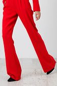 picture of habilis  - this is red pants on white background - JPG