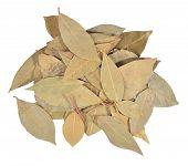 pic of bay leaf  - Dry bay laurel leaves on a white background - JPG