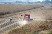 stock photo of combine  - Combine harvester working in soybean field in autumn - JPG