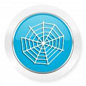 image of spider web  - spider web icon  - JPG