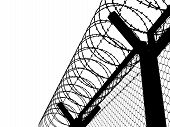image of barbed wire fence  - Fence with a barbed wire - JPG