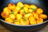 stock photo of potato-field  - Fried baby potatoes in a frying pan  - JPG