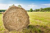 picture of hay bale  - Agricultural landscape  - JPG