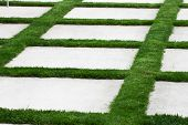 picture of manicured lawn  - Grass is growing between pieces of patio concrete blocks. ** Note: Shallow depth of field - JPG