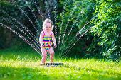 stock photo of sprinkler  - Child playing with garden sprinkler - JPG