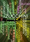 pic of zucchini  - Background concept wordcloud multilanguage international many language illustration of zucchini glowing light - JPG