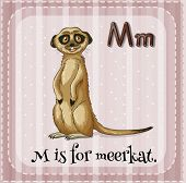 picture of letter m  - Flashcard letter M is for meerkat - JPG
