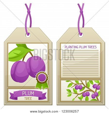 Sale tag of seedlings plum trees. Instructions for planting tree.