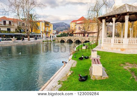 SOLIN CROATIA - FEBRUARY 26 2015: Ducks in a city park in Solin Croatia enjoying by the water