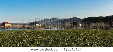 Fish Farm At Lake Tondano