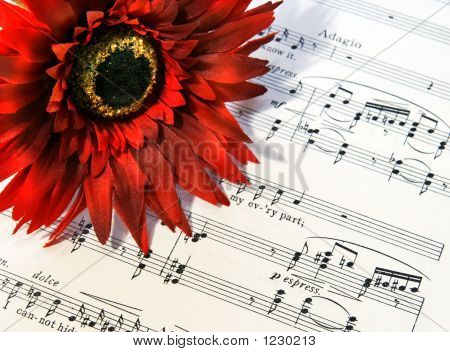 Music And Silk Flower