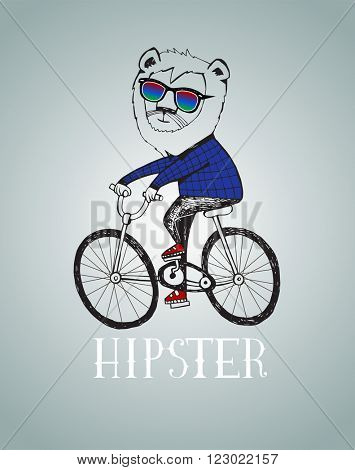 Hipster lion  riding by bicycle vector illustration, all elements separated.