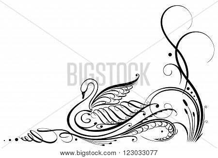 Black swan calligraphy, filigree vector design with flowers.