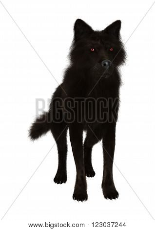 3D Digital render of a black wolf isolated on white background