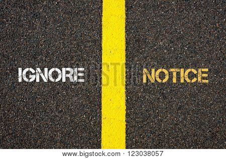 Antonym concept of IGNORE versus NOTICE written over tarmac, road marking yellow paint separating line between words