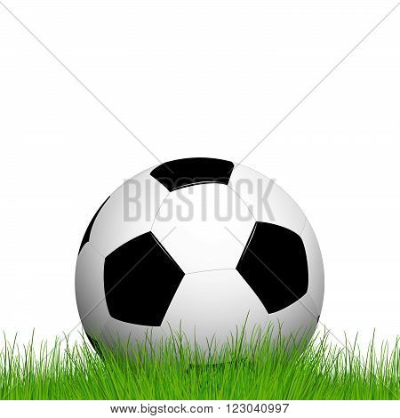 soccer ball lying in the grass with white background