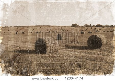 Hay bales in the field (vintage style)