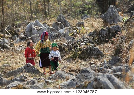 HA GIANG, VIETNAM - FEB 7: A group of unidentified Hmong children walking through a valley of stone to visit their neighbors on a holiday called Tet on February 7, 2014.