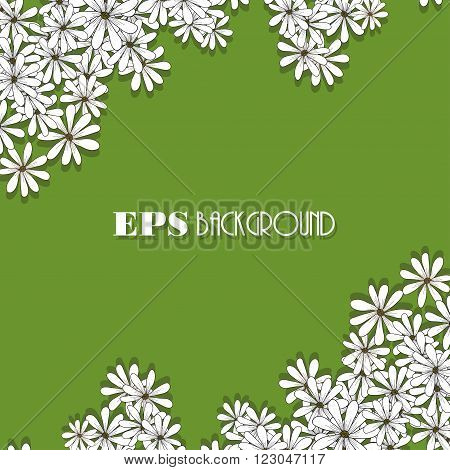 Spring design of card with flowers chamomiles and shadow on the green background. vector spring flower banner, spring flower card, invitation card and other