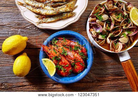 Tapas spanish seafood clams shrimps and fried anchovies fish