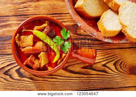 Tapas Callos madrilena typical from Madrid Spain