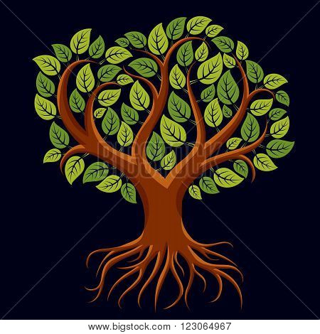 Vector Art Illustration Of Branchy Tree With Strong Roots. Tree Of Life Symbolic Graphic Image, Envi