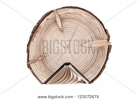 Conceptual image about the cross section of the tree trunk and book on white background. Tree Trunk and Book.