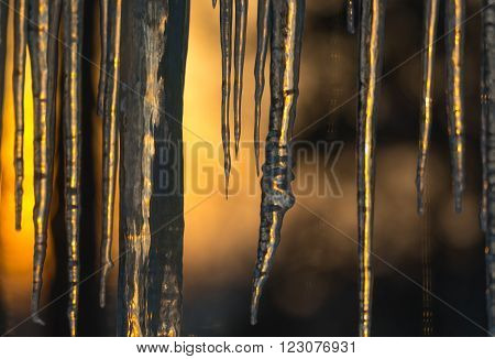 Abstract background of natural icicle formation through glass as morning sun rises.  Long icicles on a wintry January morning. Sunshine dawning through icicles that hang low from a roof's edge.