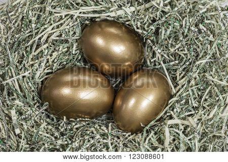 Golden eggs in a nest of shredded US dollars.