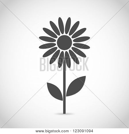 Abstract camomile on white background. Flower icon design. Flat daisy - vector illustration.