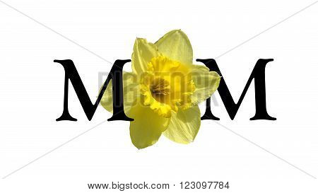 Mom is spelled out in english using a cropped flower as a design replacement for the centre letter.