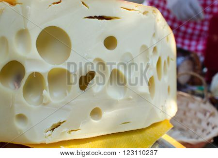 Dutch cheese with holes for sale at farmers market