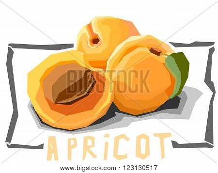 Vector simple illustration of apricots with half in angular cartoon style.
