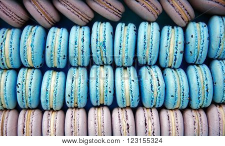 Varicolored tasty macaroons in box, close up
