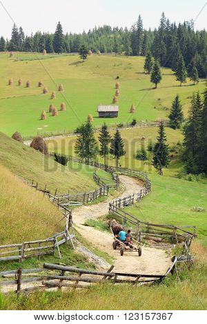 a wagon pulled by a horse it's going up a winding dirt road on the Apuseni Mountains, Romania
