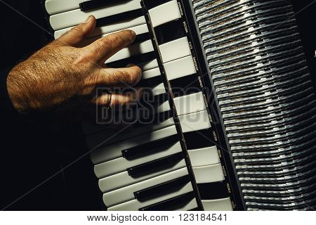 Hand On Accordion While Playing