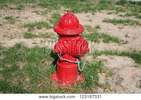 A red fire hydrant in full sunlight.