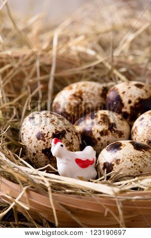 White Plastic Hen In A Nest With Quail Eggs