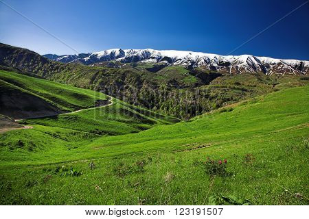 Landscape with green hlls and snowy mountains at background