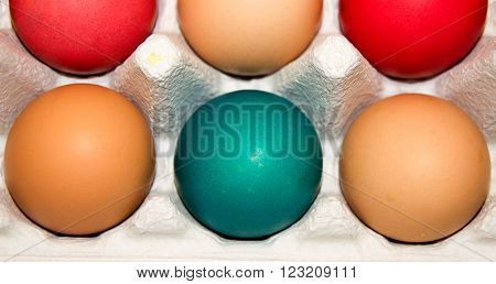 Closeup of egg carton with three organic brown eggs and three colourfully dyed Easter eggs.