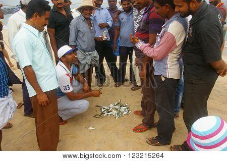 MARAVANTHE, KARNATKA/INDIA - MAY 25: Fish wholesale merchants and fishermen auctions the Sardine catch of the day at Maravanthe beach May 25, 2014 in Marvanthe, Karnataka, India.